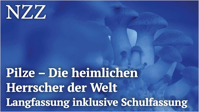 Pilze - Die heimlichen Herrscher der Welt - Langfassung inklusive Schulfassung