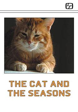 The cat and the seasons - Ein Unterrichtsmedium auf DVD