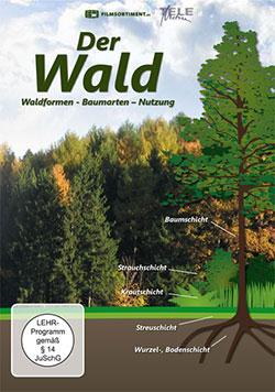 Der Wald - Ein Unterrichtsmedium auf DVD