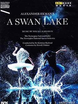 A Swan Lake - Ein Unterrichtsmedium auf DVD