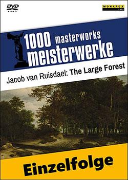 Jacob van Ruisdael: The Large Forest - Ein Unterrichtsmedium auf DVD