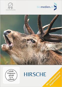Hirsche - Ein Unterrichtsmedium auf DVD