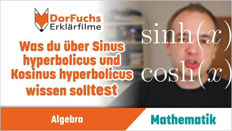 Was du über Sinus hyperbolicus und Kosinus hyperbolicus wissen solltest - Ein Unterrichtsmedium auf DVD