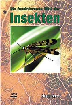 Die faszinierende Welt der Insekten - Ein Unterrichtsmedium auf DVD