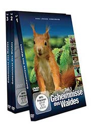Reihe: Die Geheimnisse des Waldes (3 DVDs) - Ein Unterrichtsmedium auf DVD