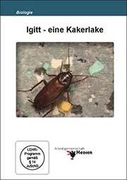 Igitt - eine Kakerlake - Ein Unterrichtsmedium auf DVD
