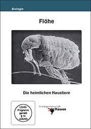 Flöhe - Ein Unterrichtsmedium auf DVD