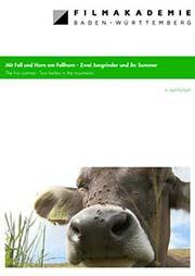 Mit Fell und Horn am Fellhorn - Zwei Jungrinder und ihr Sommer - Ein Unterrichtsmedium auf DVD