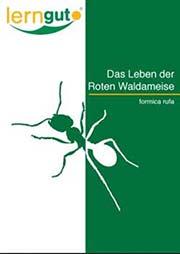 Das Leben der Roten Waldameise formica rufa - Ein Unterrichtsmedium auf DVD
