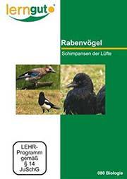 Rabenvögel - Schimpansen der Lüfte - Ein Unterrichtsmedium auf DVD