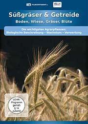 Süßgräser & Getreide - Boden, Wiese, Gräser, Blüte - Ein Unterrichtsmedium auf DVD