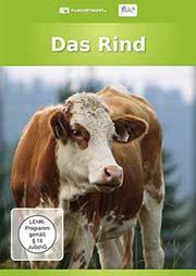 Das Rind - Ein Unterrichtsmedium auf DVD