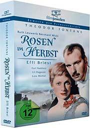 Rosen im Herbst - Effi Briest
