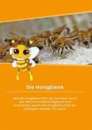 Die Honigbiene - Ein Unterrichtsmedium auf DVD