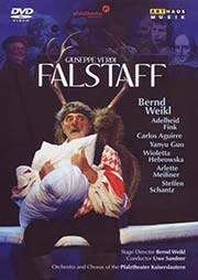 Giuseppe Verdi - Falstaff - Ein Unterrichtsmedium auf DVD