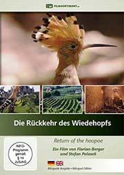 Die Rückkehr des Wiedehopfs - Ein Unterrichtsmedium auf DVD