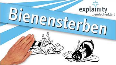 explainity® Erklärvideo - Bienensterben einfach erklärt - Ein Unterrichtsmedium auf DVD