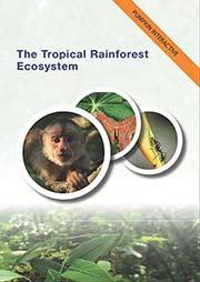 The Tropical Rainforest Ecosystem - Ein Unterrichtsmedium auf DVD