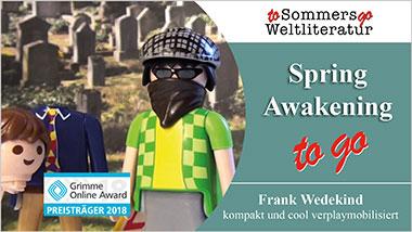 Spring Awakening to go - Ein Unterrichtsmedium auf DVD