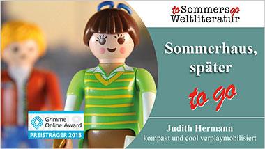 Sommerhaus, sp�ter to go - Ein Unterrichtsmedium auf DVD