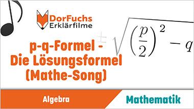 p-q-Formel - Die L�sungsformel (Mathe-Song) - Ein Unterrichtsmedium auf DVD