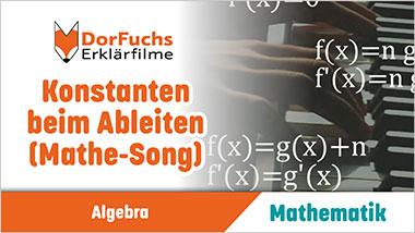 Konstanten beim Ableiten (Mathe-Song) - Ein Unterrichtsmedium auf DVD