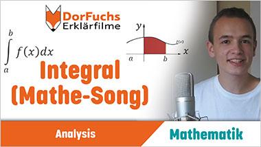 Integral (Mathe-Song) - Ein Unterrichtsmedium auf DVD
