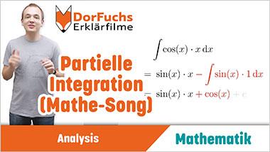 Partielle Integration (Mathe-Song) - Ein Unterrichtsmedium auf DVD