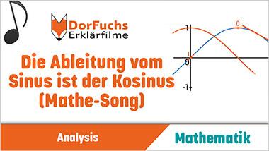 Die Ableitung vom Sinus ist der Kosinus (Mathe-Song) - Ein Unterrichtsmedium auf DVD
