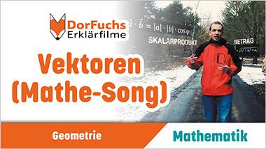 Vektoren (Mathe-Song) - Ein Unterrichtsmedium auf DVD