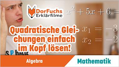 Quadratische Gleichungen einfach im Kopf lösen! - Ein Unterrichtsmedium auf DVD