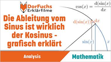 Die Ableitung vom Sinus ist wirklich der Kosinus - grafisch erkl�rt - Ein Unterrichtsmedium auf DVD
