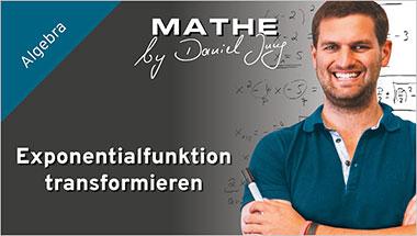Exponentialfunktion transformieren - Ein Unterrichtsmedium auf DVD