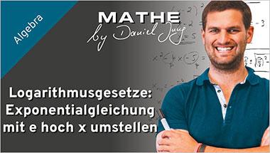 Logarithmusgesetze: Exponentialgleichung mit e hoch x umstellen - Ein Unterrichtsmedium auf DVD
