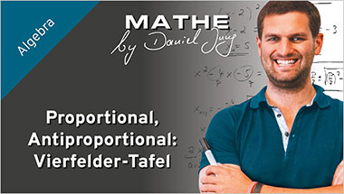 Proportional, Antiproportional: Vierfelder-Tafel - Ein Unterrichtsmedium auf DVD