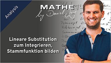 Lineare Substitution zum Integrieren, Stammfunktion bilden - Ein Unterrichtsmedium auf DVD