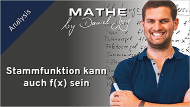 Stammfunktion kann auch f(x) sein - Ein Unterrichtsmedium auf DVD