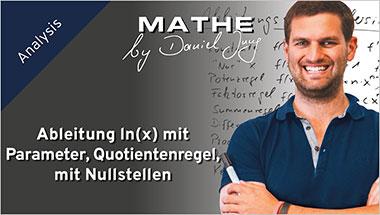 Ableitung ln(x) mit Parameter, Quotientenregel, mit Nullstellen - Ein Unterrichtsmedium auf DVD