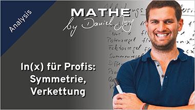 ln(x) für Profis: Symmetrie, Verkettung - Ein Unterrichtsmedium auf DVD
