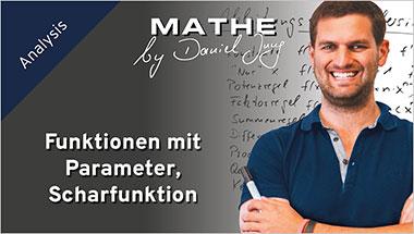 Funktionen mit Parameter, Scharfunktion - Ein Unterrichtsmedium auf DVD