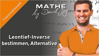 Leontief-Inverse bestimmen, Alternative - Ein Unterrichtsmedium auf DVD