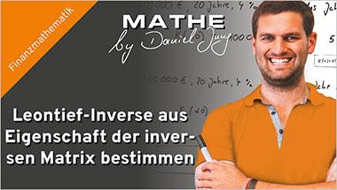 Leontief-Inverse aus Eigenschaft der inversen Matrix bestimmen - Ein Unterrichtsmedium auf DVD