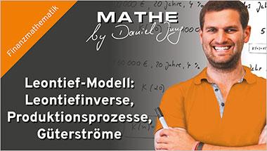 Leontief-Modell: Leontiefinverse, Produktionsprozesse, Güterströme - Ein Unterrichtsmedium auf DVD