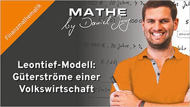 Leontief-Modell: Güterströme einer Volkswirtschaft - Ein Unterrichtsmedium auf DVD