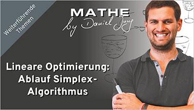 Lineare Optimierung: Ablauf Simplex-Algorithmus - Ein Unterrichtsmedium auf DVD
