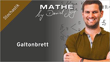 Galtonbrett - Ein Unterrichtsmedium auf DVD