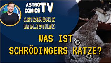 Was ist Schrödingers Katze? - Ein Unterrichtsmedium auf DVD