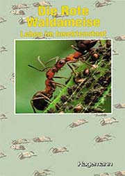 Die Rote Waldameise - Ein Unterrichtsmedium auf DVD