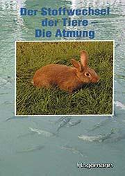 Der Stoffwechsel der Tiere - Ein Unterrichtsmedium auf DVD