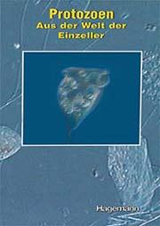 Protozoen - Ein Unterrichtsmedium auf DVD